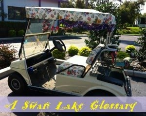 A Swan Lake Glossary