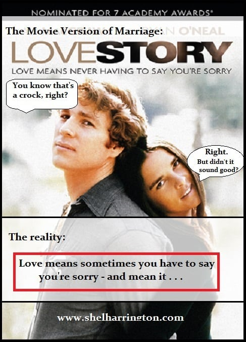 Love Story - Love DOES Mean Having to Say You're Sorry