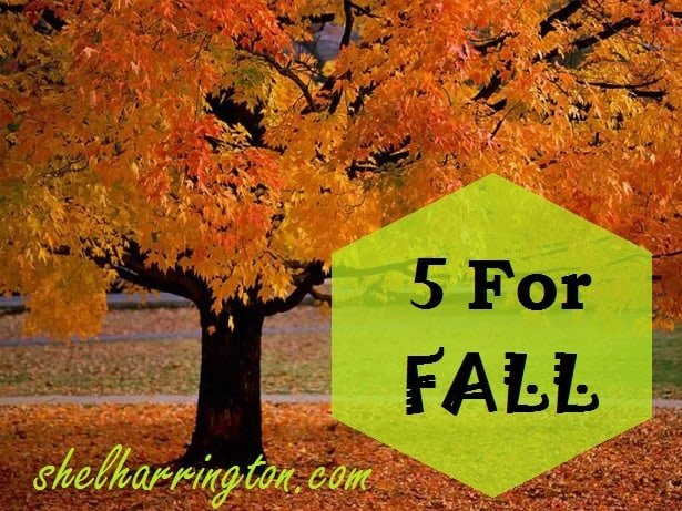 5 For Fall